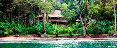 Copa del Arbol - Drake Bay Costa Rica Hotel