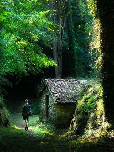 On the North Camino de Santiago. Journey of wonder and dreams.