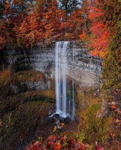 Private Customized Tours and Luxury Travel Packages Ontario Travel, Toronto Travel, Places To Travel, Places To Visit, East Coast Travel, Weekends Away, Natural Wonders, Hotels And Resorts