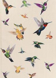 Hummingbird Ivory rug by alexander mcqueen