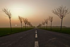 Sunset boulevard by Lucien Vatynan on 500px