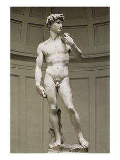Michelangelo's David is made in 1501 and is a sculpture made out of marble. This is amazing because of how big it is. It is 15 meters high and made by hand. It is one of a kind and never been done before.