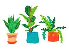 Illustrator, Graphic Design Illustration, Behance, Photoshop, Creative, Plants, Plant, Illustrators, Planets