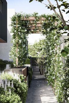 Moon Garden, Lush Garden, Balcony Garden, Dream Garden, Outdoor Areas, Outdoor Rooms, Landscape Design, Garden Design, Garden Living
