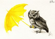 Raining tears and gas  傾盆而下的火光 如果只是下雨, 我才不會哭  words by Claire Fang #umbrellarevolution #hongkong #owl
