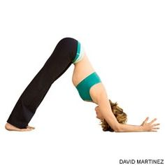 Dolphin Pose Benefits: Calms the brain and helps relieve stress and mild depression -Stretches the shoulders, hamstrings, calves, and arches  -Strengthens the arms and legs  -Helps relieve the symptoms of menopause  -Relieves menstrual discomfort when done with head supported  -Helps prevent osteoporosis  -Improves digestion  -Relieves headache, insomnia, back pain, and fatigue  -Therapeutic for high blood pressure, asthma, flat feet, sciatica