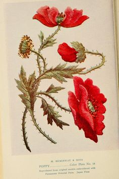 vintage flower, vintage printable