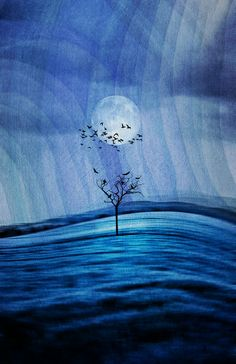 mystic blue Art Print by Viviana Gonzalez Beautiful Moon, Love Blue, Moon Art, Blue Art, Illustrations, Blue Moon, My Favorite Color, Shades Of Blue, Celestial