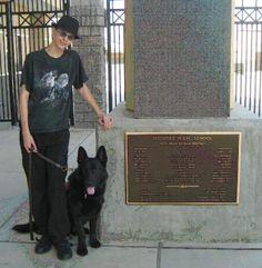 Placing Psychiatric Service Dogs in Public Schools