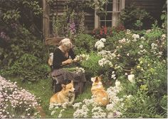 HOME & GARDEN: The garden of Tasha Tudor