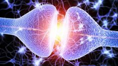 Science finally found the key neurotransmitter to spirituality and higher consciousness! A team of researchers found that the presence of a receptor that. Symptoms Of Bipolar Depression, Best Medication For Depression, Explaining Depression, Living With Depression, How To Cure Depression, Overcoming Depression, Serotonin Syndrome, Increase Serotonin, Spirituality