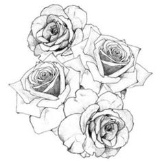 roses I have this tattooed on my foot. It hurt like crazy, but I love it!
