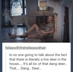 that dang deer always starts shit Taylor Swift Music Videos, Taylor Swift Funny, All About Taylor Swift, Live Taylor, Taylor Alison Swift, We The People, Good People, Swift 3, That's Hilarious