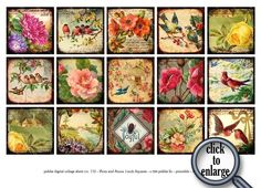 New -- Flora and Fauna collage sheet in 2 inch squares -- piddix no. 720