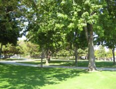 #smpinspiration. Clover Park in Santa Monica (Ocean Park area). The toddler playground is at the far end of the park adjacent to Santa Monica Airport. If your kid loves airplanes they can play while watching them takeoff and land. How cool!