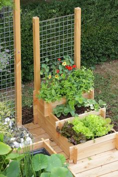 Potager Garden Most Popular Kitchen Garden Design Ideas 19 - With the popularity of growing your own food soaring the kitchen garden has once more become a must have for […]