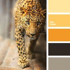 Rich color palette that mixes shades of scorched sand and an orange disc of setting sun is framed by a black background. This powerful combination of energy is not for everyone, only for strong and confident individuals. No wonder that jaguar print which is used for extravagant clothing almost never goes out of fashion. | Color Palette | Commercial Real Estate | Residential Real Estate | Usaj Realty