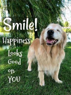 ❤️Hit That Share Button To Motivate Your Friends & Family❤️ ▬▬▬▬▬▬▬▬▬▬▬▬▬▬▬▬▬▬▬ #MondayMotivation #MotivationMonday #quotes #quoteoftheday #motivationalquotes #PuppyLove #PawPrints #Happiness #GoldenRetriever #LancasterPuppies www.LancasterPuppies.com