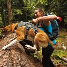 Ruff Wear Web Master Dog Harness Great when walking on the trails and to help with mobility in older and after surgery.
