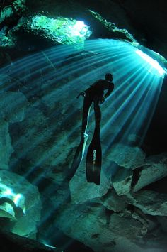 Essential Spearfishing Gear For The Beginner Underwater Photos, Underwater World, Underwater Photography, Cave Diving, Scuba Diving, Les Continents, Caribbean Vacations, Delphine, Hai