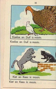 """Koekoe, Duif, Kiet en Kees out of the """"Sus en Daan"""" reading books"""