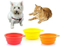 We love all Pets Set of 3  Red Yellow and Orange  Silicone Small Collapsible Dog Bowls for Pet Travel *** More info could be found at the image url. Note: It's an affiliate link to Amazon.
