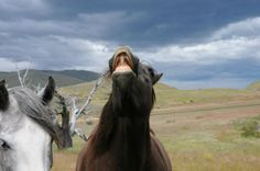 Wildlife Honorable Mention // Hola by Jacque Hulburd // A comical photo of a criollo horse during a horseback ride through Patagonia's rugged countryside. #knowmadtraveljournal #southamerica #adventure #travel
