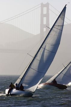 Sailboats Race On San Francisco Bay