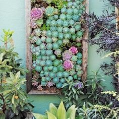 How to Create a Luxe Outdoor Living Space! | Go Green: Add some sturdy green plants like succulents or big leafy potted plants for lots of lush green glam with minimal maintenance. (Also,see our previous post on urban gardensfor more ideas!)