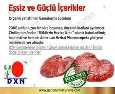 Dxn Selcan Bağcı Ekibi 0532.3041223 Dxn, dxn turkiye, ganoderma, www.ganodermaturkiye.com, dxn türkiye ürünleri, dxn yorumlar, dxn kullanıcı yorumları, dxn nedir, dxn ganoderma, dxn ürünleri ve faydaları, dxn üyelik, dxn reishi, reishi, dxn forum, dxn şikayet, dxn ürünleri, dxn turkey, dxn türkiye, dxn selcan bağcı, cordyceps, noni, spiriluna, dxn kayıt