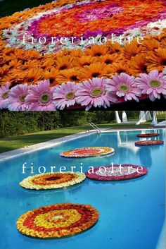Ideas Party Pool Decorations Friends For 2019 Floating Pool Decorations, Swimming Pool Decorations, Pool Wedding Decorations, Flower Decorations, Luau, Swimming Pool House, Moroccan Theme, Teen Decor, Floating Flowers