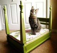 cute diy pet bed from old table
