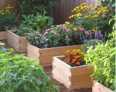 "Easy raised beds for veggies from Mel Bartholomew's ""Sqaure Foot Gardening""."