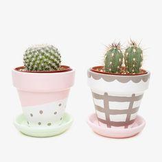 Satsuki Shibuya Planting Pots for Poketo - diy inspiration Cactus Flower, Flower Pots, Flower Bookey, Flower Film, Cactus Pot, Plants Are Friends, Deco Floral, Cactus Y Suculentas, Painted Pots