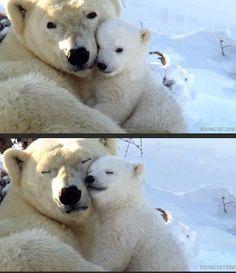 #Amor de #madre