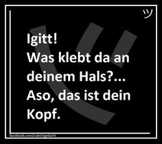 #lustigesprüche #liebe #funnypics #lmao #funny #sprüchezumnachdenken #photooftheday #lol Morbider Humor, Funny Memes, Funny Things, Movies, Movie Posters, Lol, Evil Quotes, Jokes Quotes, Funny Sarcastic