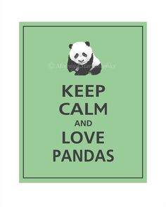 PANDAS!!! things-that-make-me-smile i seen this and thought of u Paullette so posted it for u to see......... like?
