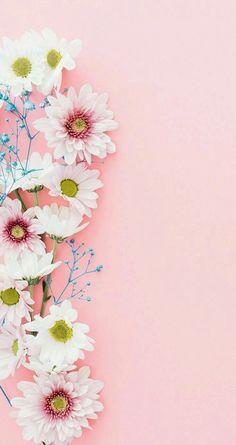 New Wallpaper Celular Whatsapp Pink Ideas Flower Background Wallpaper, Flower Phone Wallpaper, Cellphone Wallpaper, Flower Backgrounds, Screen Wallpaper, Mobile Wallpaper, Iphone Backgrounds, Baby Pink Wallpaper Iphone, Background Patterns