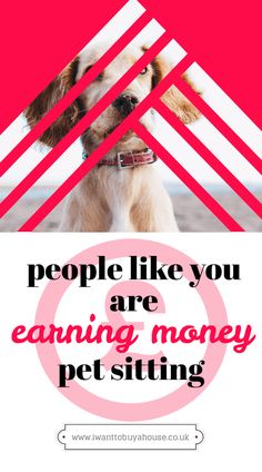 Pet sitting really is the ultimate side hustle. Find out how you can get started, how much money you'll earn and much more by clicking here. Cash From Home, Make Money From Home, Way To Make Money, Extra Cash, Extra Money, Earn More Money, Pet Sitting, Money Today, Money Saving Tips