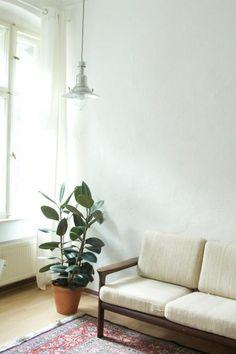 New Sch ne schlichte Wohnzimmer Einrichtung Wohnzimmer livingroom plants
