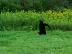 Upstate New York Bigfoot video . CHECKOUT our YOUTUBE CHANNEL @ http://www.youtube.com/user/BUTCHYKID624?feature=mhee