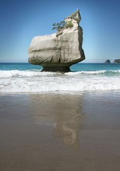 Cathedral Cove, Coromandel Peninsula, New Zealand | image by Kyle Carter