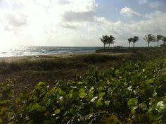 Really nice beach day, glad I got a parking spot now. via @SurfnWeatherman (James Wieland)