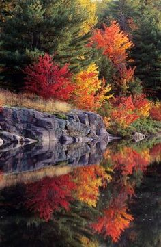 there is another beautiful killarney in the world .Autumn reflections ~ Killarney Provincial Park in central Ontario, Canada by Don Johnston All Nature, Amazing Nature, Amazing Art, Beautiful World, Beautiful Places, Amazing Places, Autumn Scenery, Fall Pictures, Fall Images