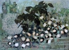 Broad Bean Blossom, Frances Ryan
