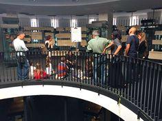 #museocastromediano #famu #salentowebtv Domenica 12 ottobre il Museo Sigismondo Castromediano ha aperto le porte alle famiglie per Famu. Guarda il video - http://www.salentoweb.tv/video/9067/famu-museo-museo-sigismondo