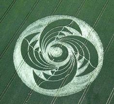 Crop Circle Season 2009 Part 3 : June - Psychedelic Adventure