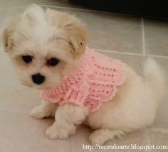 """Sofia, """"bebê"""" da raça Maltes/45 dias, veste blusãoconfeccionadoem tricô e crochê..., ! Usei fio antialérgico, especial para..."""