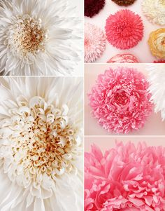 Giant Paper Flowers by Tiffanie Turner