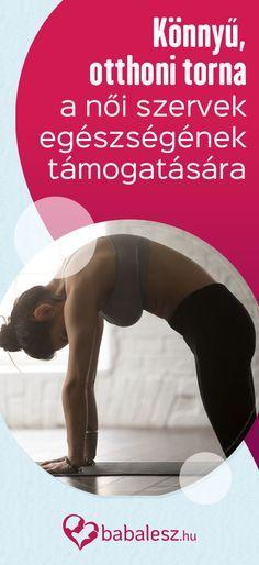 Tai Chi, Pilates, Health Fitness, Relax, Yoga, Motivation, Education, Sports, Nalu